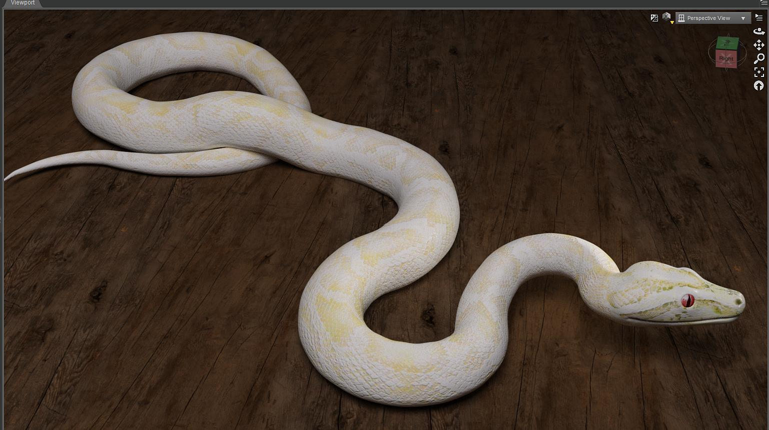Solved] Albino textures for Morphing Python - Daz 3D Forums
