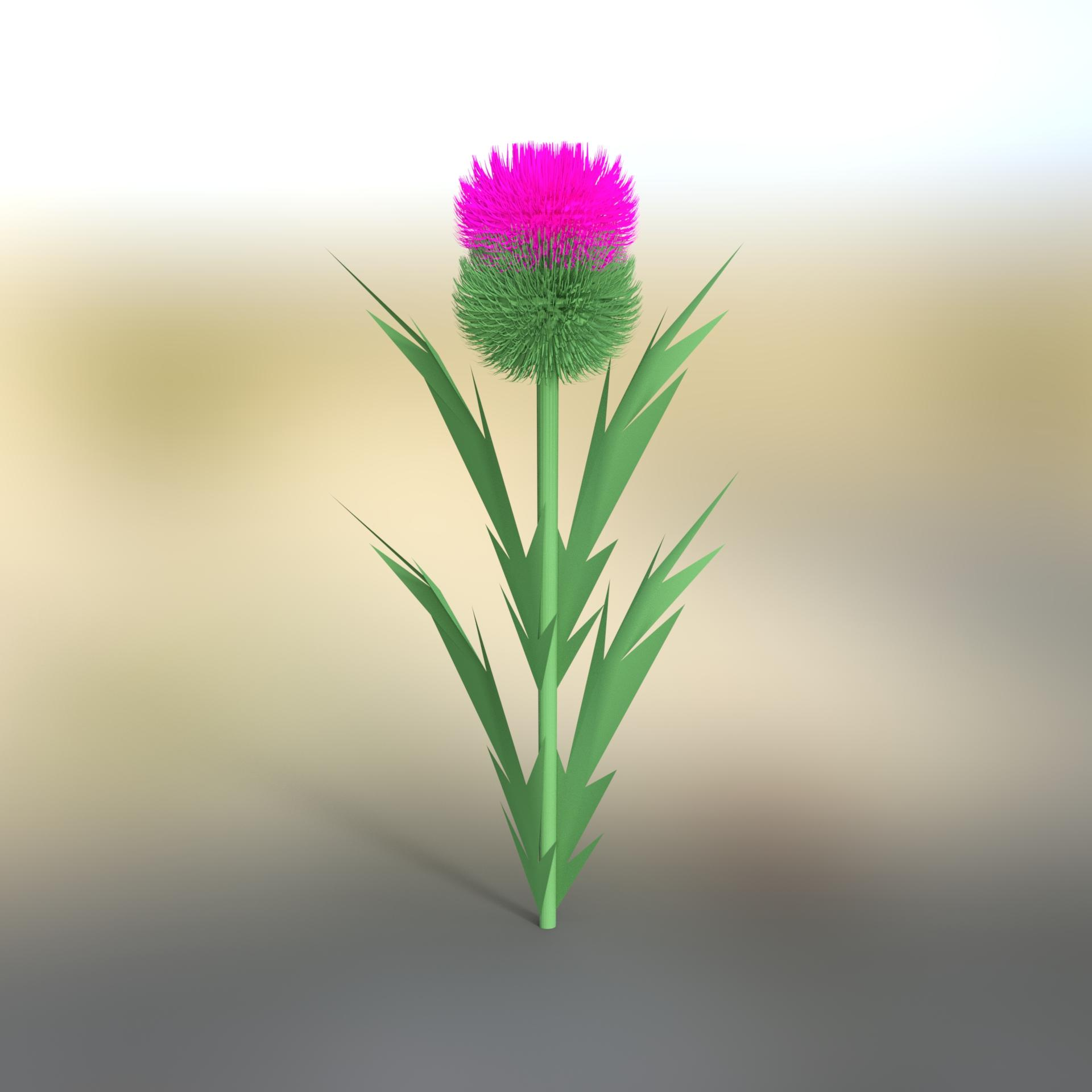 looking for scottish thistle daz 3d forums