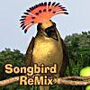 Songbird ReMix