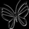 AnIronButterfly