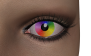 RainbowArtist