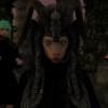 Malawolf