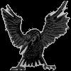 Corvus_X